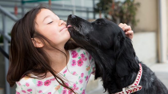 How The San Francisco SPCA is Instilling Compassion in Children