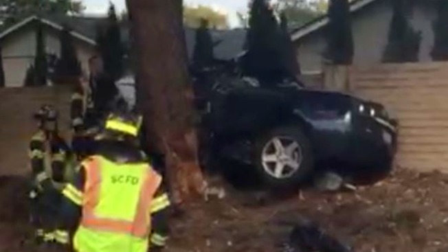 San Tomas Car Accident Tree