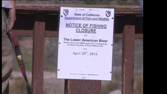California Bans Fishing on Part of American River Near Folsom Amidst Drought
