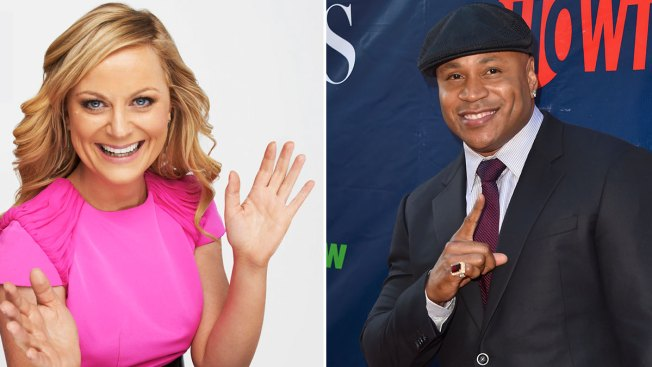 Amy Poehler, LL Cool J Among This Year's Emmy Presenters