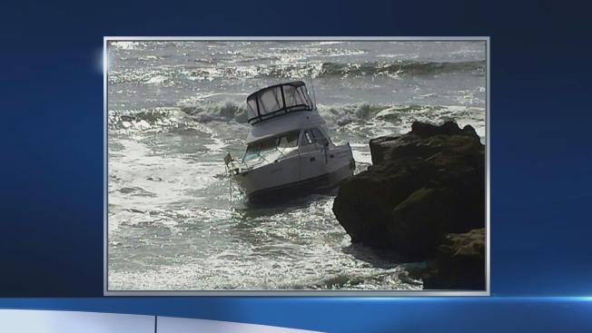 5 People Safely Evacuate Boat After Colliding With Whale Near Pescadero