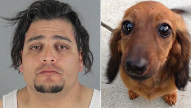 San Mateo PetSmart Groomer Pleads Not Guilty to Allegedly Strangling, Killing Dog