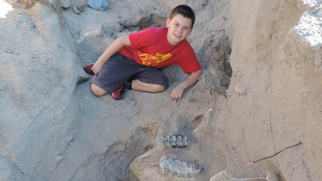 Boy trips on million-year-old fossil during hike in New Mexico