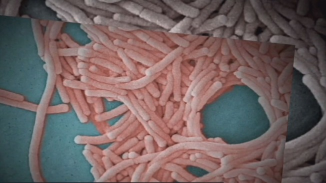 Legionnaires Disease Reported At Rio All Suites Hotel