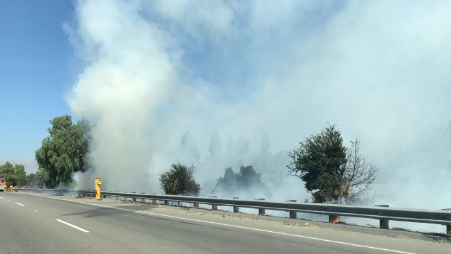 Trees, Brush Burn Alongside State Route 237 in Mountain View