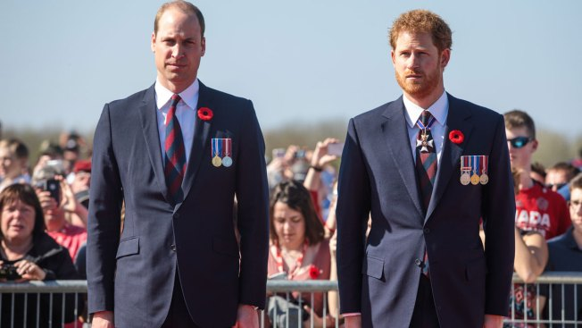 William and Harry to mark Diana's birthday with handsome gesture