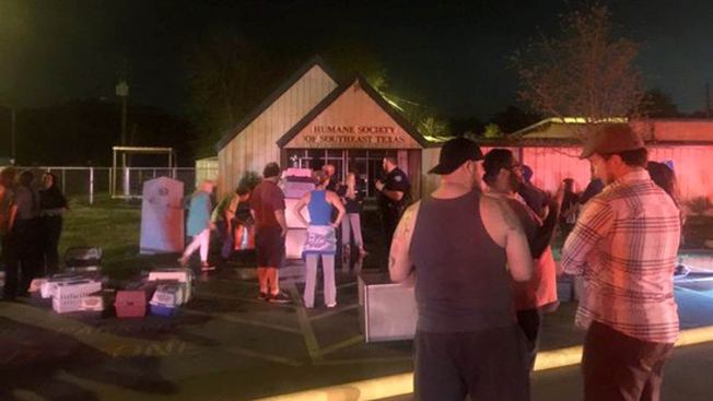 Nearly 70 Dogs Die in Texas Shelter Fire Blamed on Dryer