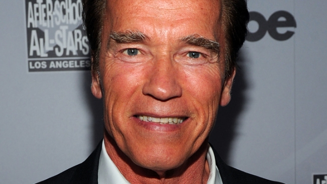 He's Back! Schwarzenegger Returns to TV