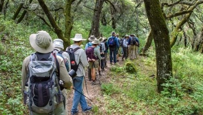 Save Mount Diablo's 2018 Free Public Hike Series