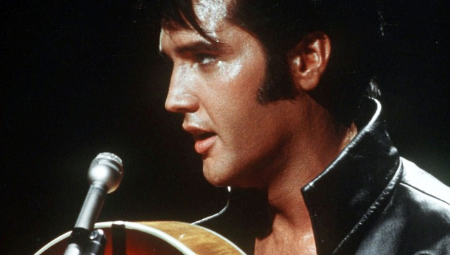 Love Him Tender: An Elvis Birthday Celebration