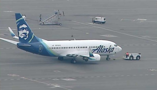 Alaska Airlines flight grounded after rats spotted jumping aboard
