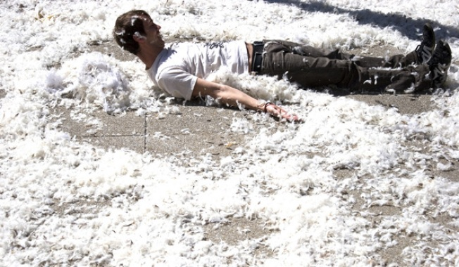 Add Messy to Tonight's Massive Pillow Fight in the City