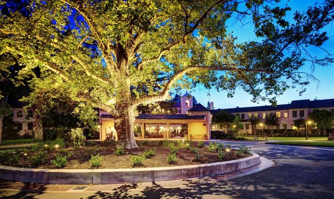 Fairmont Sonoma Mission Inn and Spa Tree Lighting Ceremony