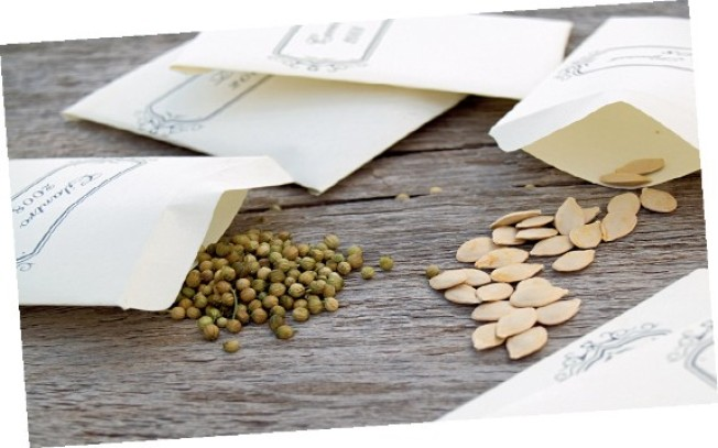 Introduction to Seed Saving April 13