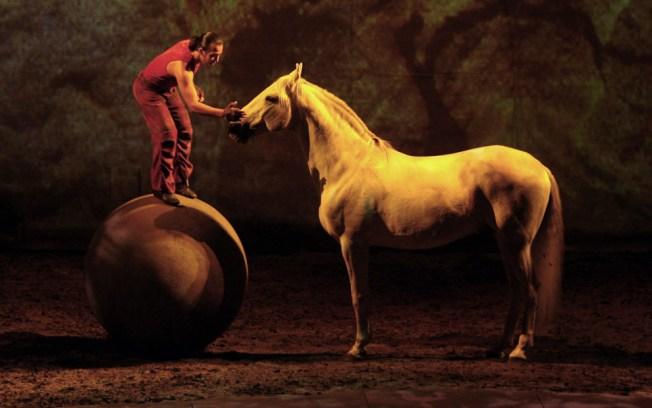 12/2: Horse Ballet & Exploring Sugar