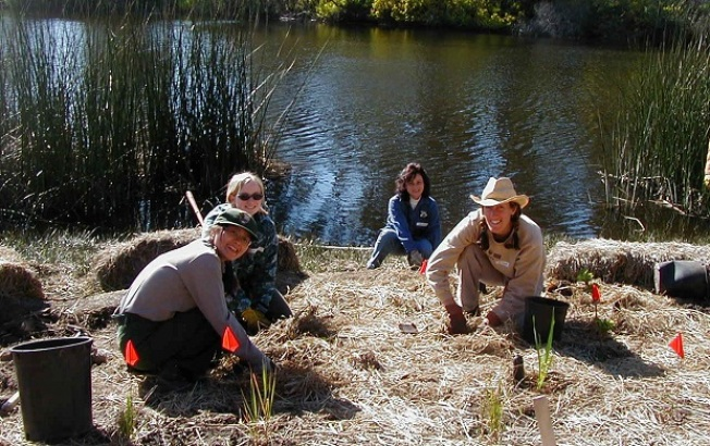 Mountain Lake Planting Day and Celebration