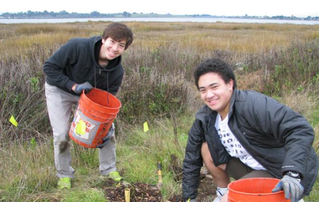 World Environment Day at Save The Bay