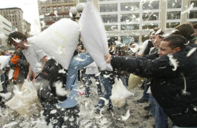 The Pillow Fight of the Year