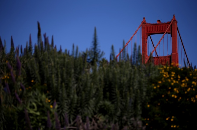San Francisco Names Golden Gate Park Meadow in Honor of Comedian Robin Williams