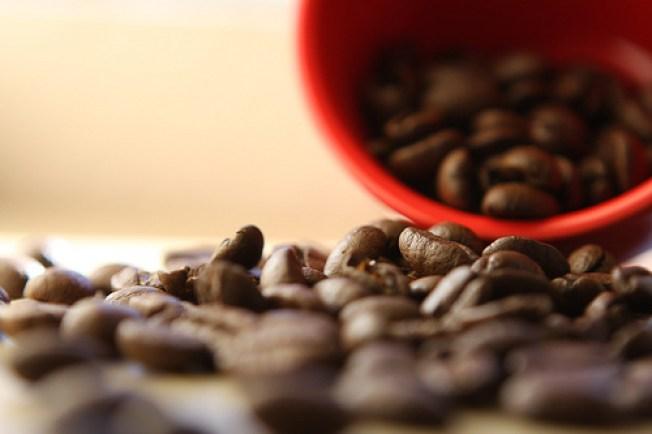 Food Bank Gets Coffee -- Like, a Lot of It