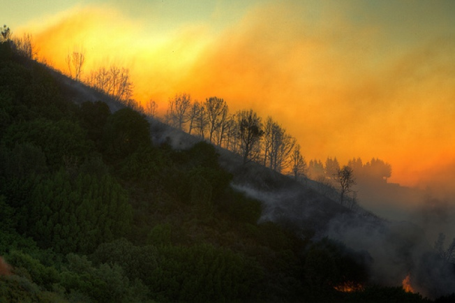Cal Fire Gets Upper Hand on Wildfire