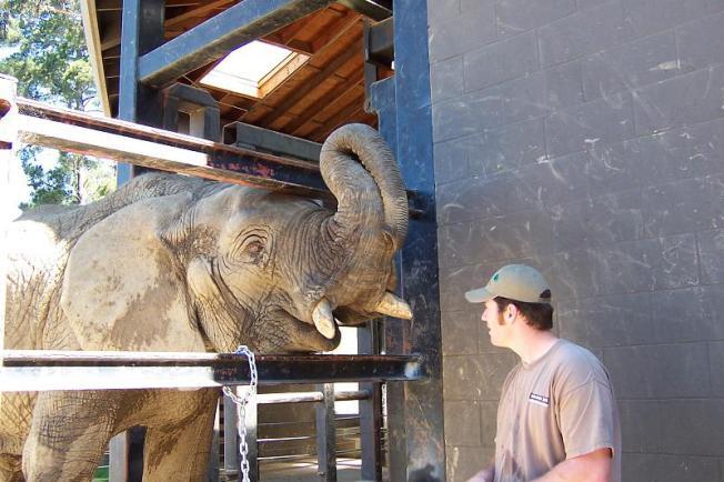 Oakland Budget Cuts Impacts Jobs, Zoo