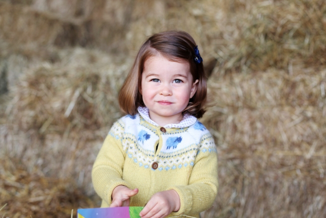 New photo of Princess Charlotte released ahead of her second birthday