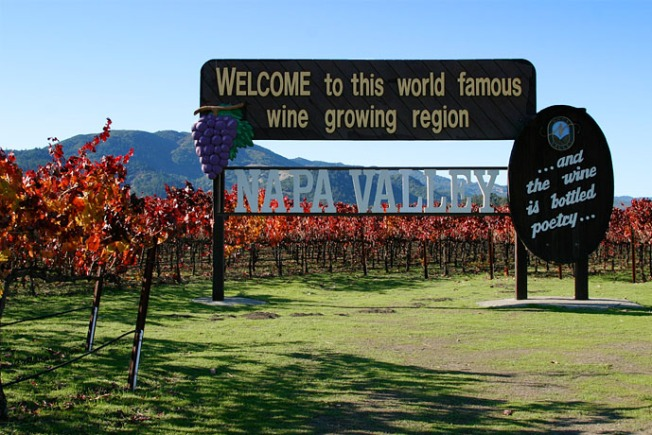 Napa Valley Winemakers Prepare for Drought