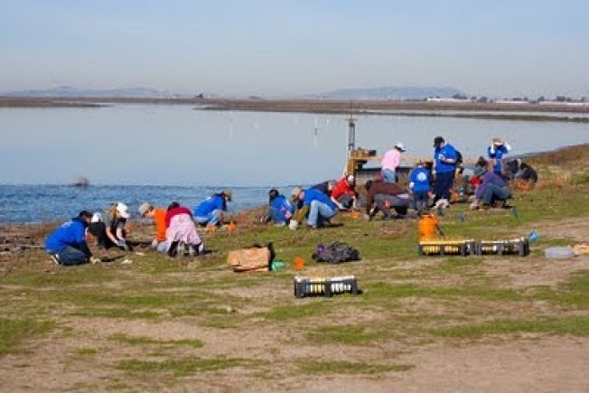 Train Your Brain Day at the Eden Landing Ecological Reserve Oct 13!