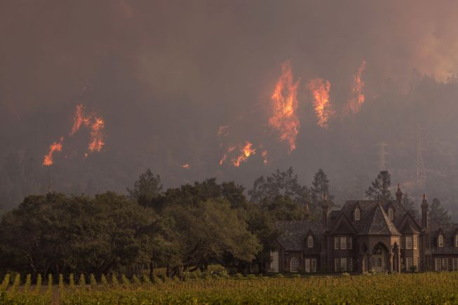 California Wildfires Expected to Cause Record Insurance Loss: Report
