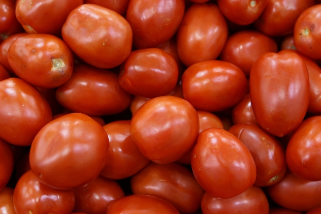 Tomato Battle Coming to Fairgrounds