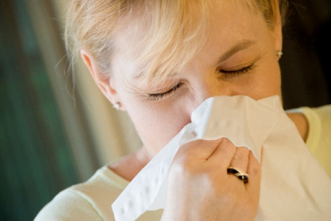 Blame Global Warming For Worsening Allergies