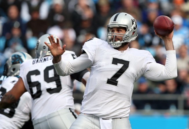 With Pryor's Showing, Raiders May Not Need Leinart in 2013