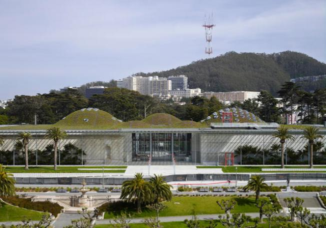Cal Academy Offers Free Weekends