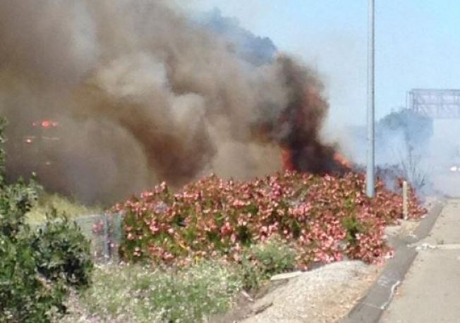 Sig-Alert On U.S. 101, Report Of Possible Burning Object Thrown Before Brush Fire