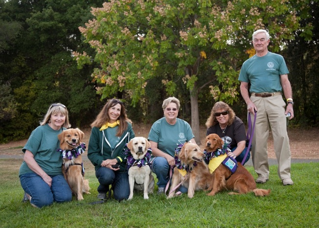 DogFest Walk and Roll 2014