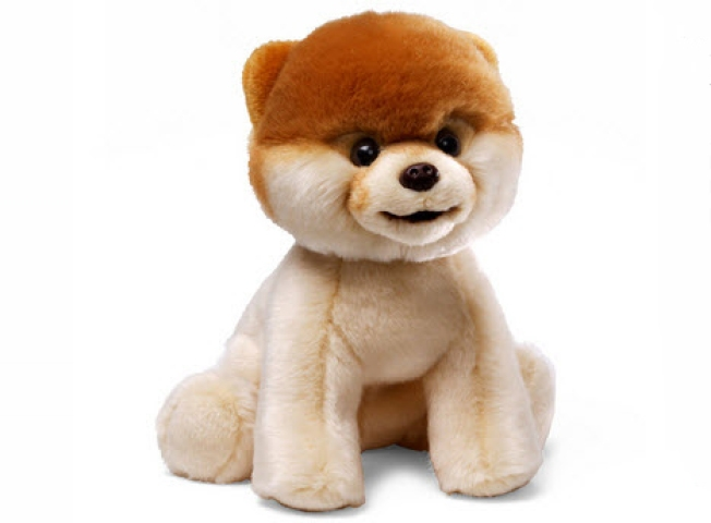Gund Immortalizes Boo, the World's Cutest Dog