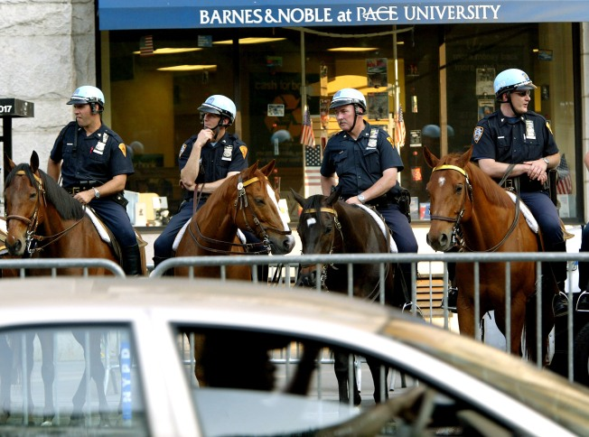 SJ Mounted Police Face Budget Cuts