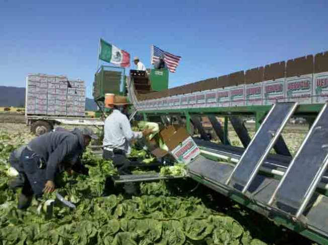 Gov. Rejects Farmworker Overtime Bill