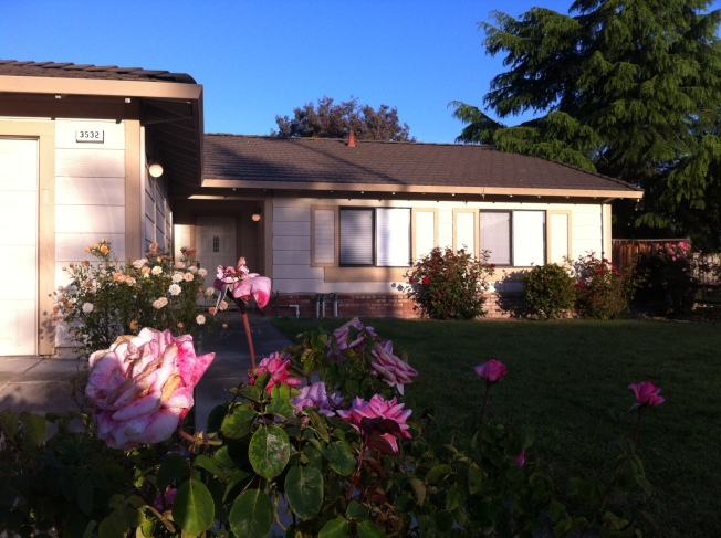Pleasanton Deaths Ruled Murder-Suicide