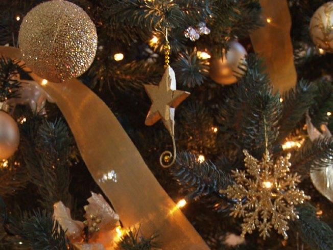 Sonoma's Starless Christmas