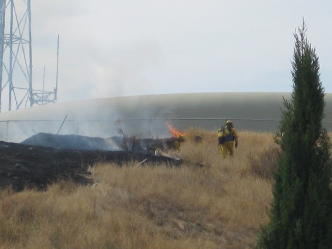 Bird on Wire Blamed for Fire