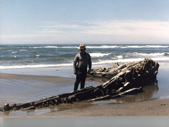 Wooden Shipwreck Exposed on Ocean Beach