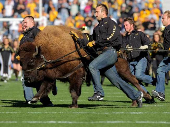 Pac-10 to Expand Herd