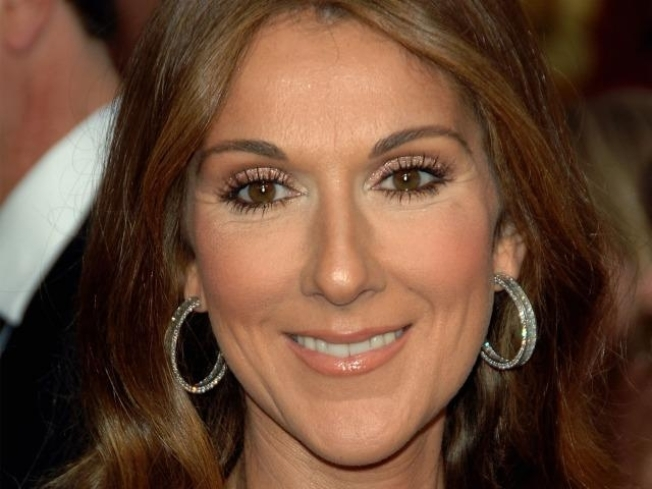 "Celine Dion Pregnant with Twins After Six ""Exhausting"" IVF Attempts"