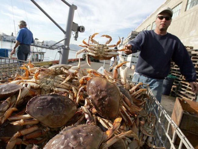 49ers-Ravens Sets Off Crab War