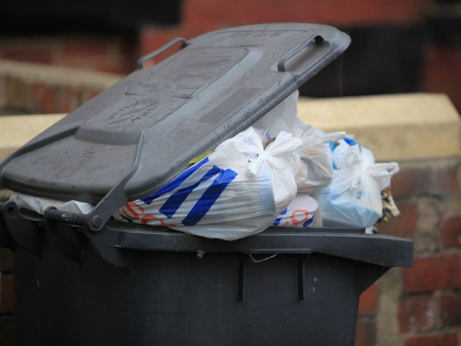Heavy Fines in Store for Putting Out the Trash too Early