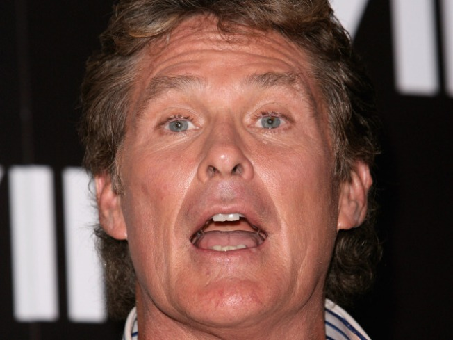 "David Hasselhoff to Join ""Dancing With the Stars"""
