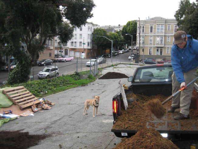 Hayes Valley Sprouts a Farm