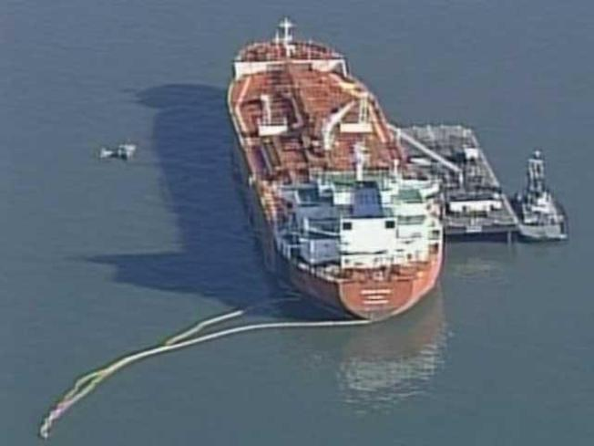 Bay Oil Spill Takes First Victims
